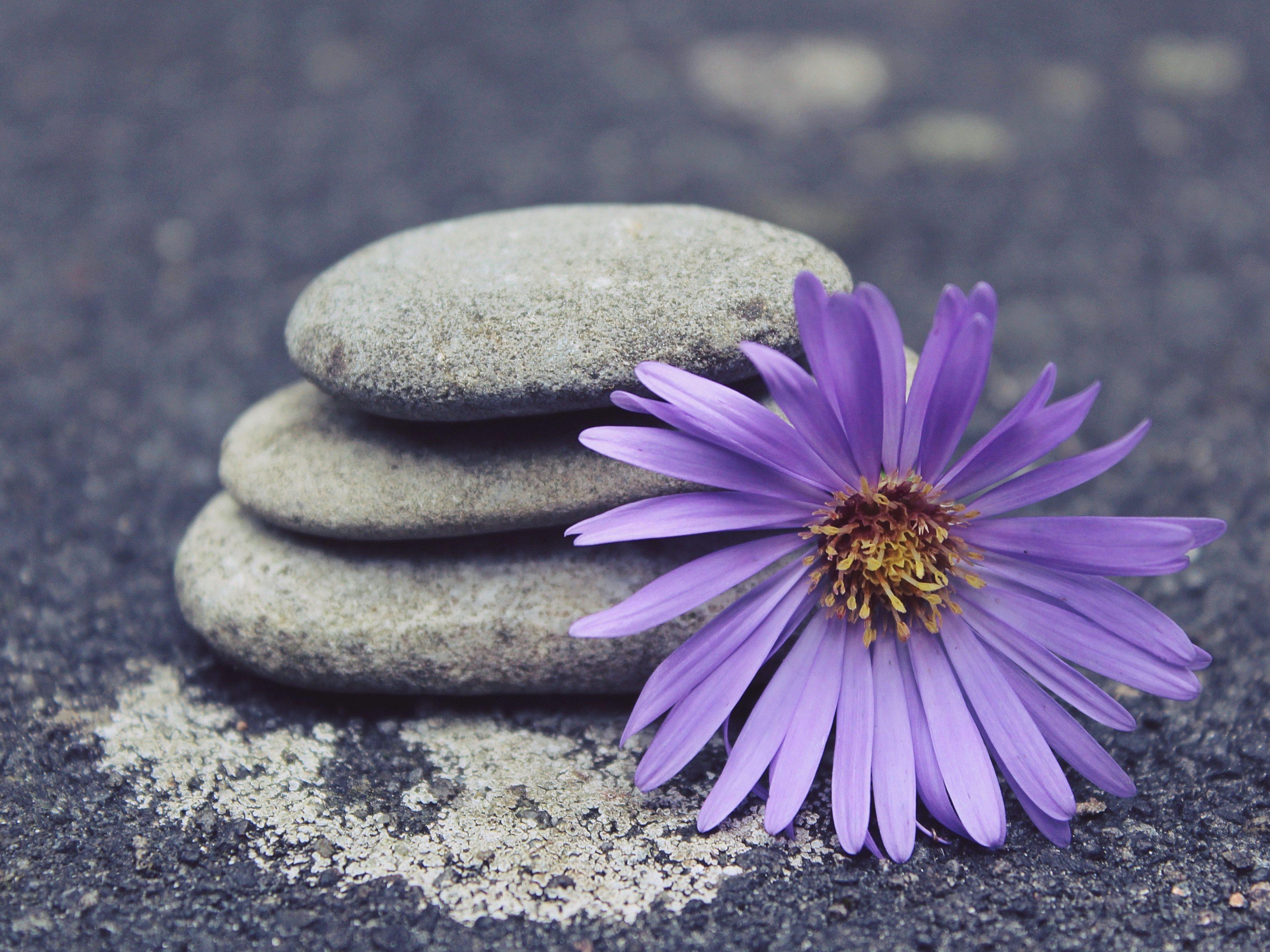 Listening Heart Mindfulness